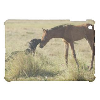 Tarifa, Cadiz, Andalusia, Spain 2 iPad Mini Cover