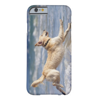 tarifa, cadiz, andalusia, spain barely there iPhone 6 case