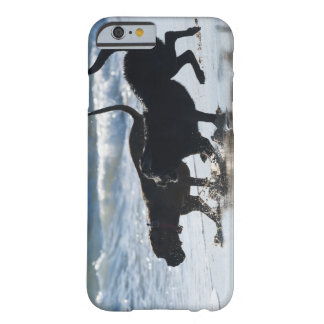 tarifa cadiz andalusia spain barely there iPhone 6 case