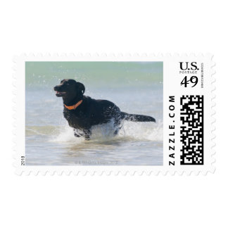 tarifa, cadiz, spain postage stamp