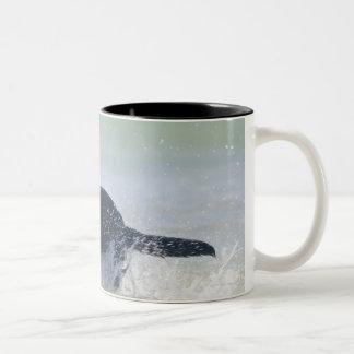 tarifa, cadiz, spain Two-Tone coffee mug