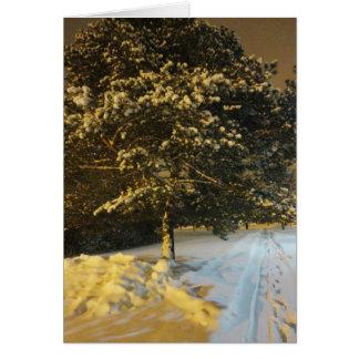 Tarjeta 2 de la estación del invierno
