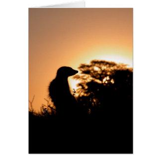 Tarjeta 5 de KMP - puesta del sol del Flav de Flav