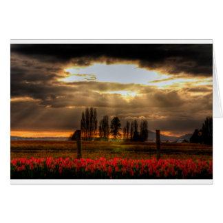 Tarjeta adorada de los tulipanes