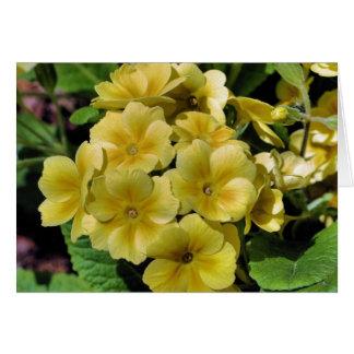 Tarjeta amarilla de la fotografía de la flor de la