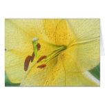 Tarjeta amarilla del arte de la flor del lirio