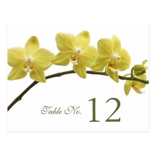 Tarjeta amarilla del número de la tabla de las orq tarjeta postal