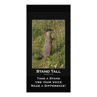 Tarjeta Amarillo-Hinchada de la marmota Tarjeta Fotográfica Personalizada