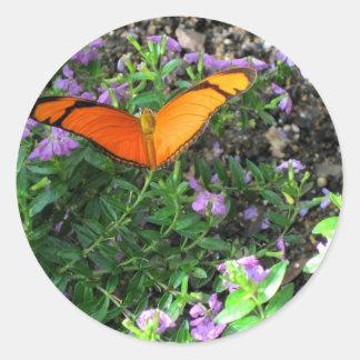 Tarjeta anaranjada de la mariposa de Julia Pegatina Redonda
