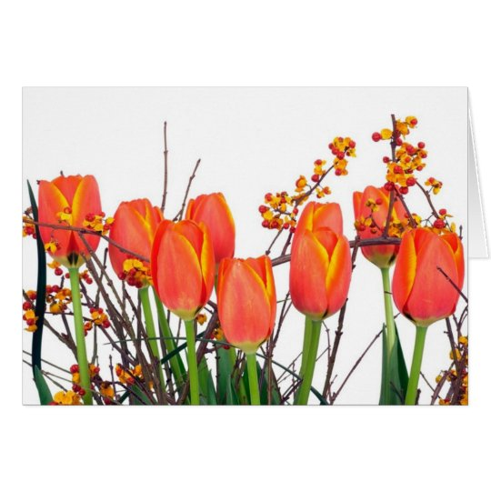 Tarjeta anaranjada de los tulipanes