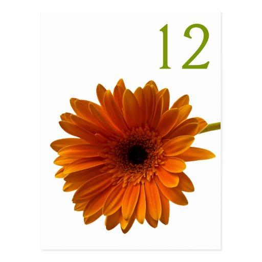 Tarjeta anaranjada del número de la tabla de la ma tarjeta postal