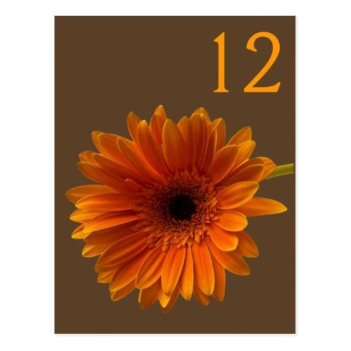 Tarjeta anaranjada del número de la tabla de la ma postal