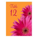 Tarjeta anaranjada y rosada del número de la tabla postal