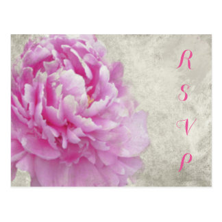 Tarjeta antigua rosada de RSVP del Peony Postales