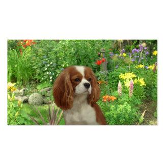 Tarjeta arrogante de BreederBusiness del perro de Tarjetas De Visita
