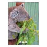 Tarjeta australiana de la fauna