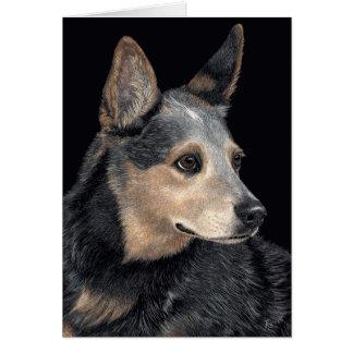 Tarjeta australiana del perro del ganado -