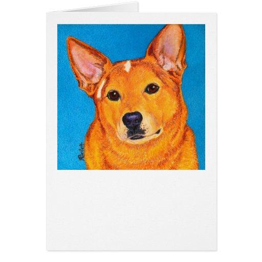 """Tarjeta australiana del perro del ganado - """"rojo """""""