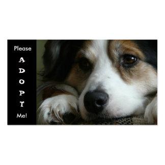 Tarjeta australiana del refugio del perro de tarjetas de visita