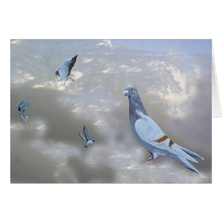 Tarjeta autodirigida de los pájaros de Pidgeons