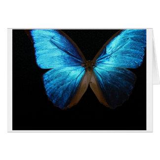 Tarjeta azul brillante de Beautifu Buttefly