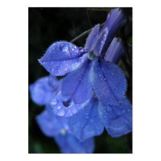Tarjeta azul cubierta de rocio de la foto del ATC  Plantillas De Tarjetas De Visita