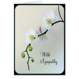 Tarjeta blanca de la condolencia de las orquídeas