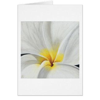 Tarjeta blanca del arte del Frangipani