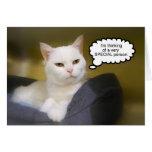 Tarjeta blanca del humor del cumpleaños del gato