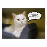 Tarjeta blanca del humor del cumpleaños del gato d