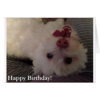 Tarjeta blanca, divertida del feliz cumpleaños del