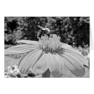Tarjeta blanco y negro de la abeja ocupada y de la