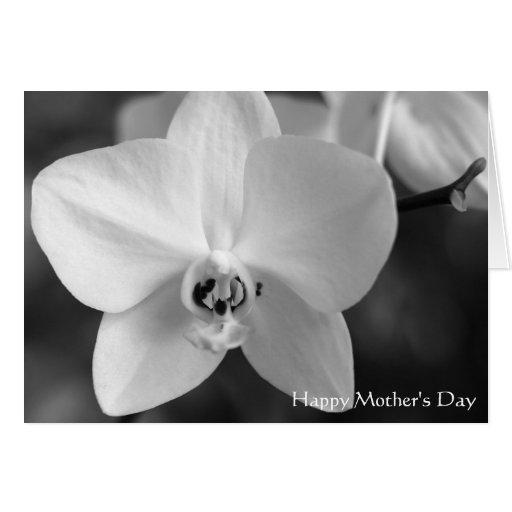 Tarjeta blanco y negro del día de madre