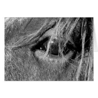 Tarjeta - caballo