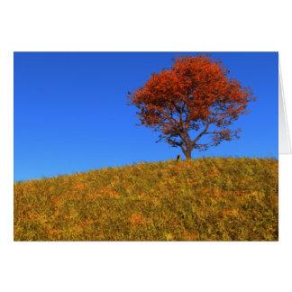 Tarjeta clara del día del otoño
