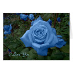 Tarjeta color de rosa azul