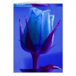 Tarjeta color de rosa azul I del placer - personal