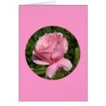 """Tarjeta, """"color de rosa rosado en el círculo"""" N-1"""