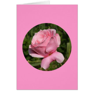 """Tarjeta, """"color de rosa rosado en el círculo"""" N-1 Tarjeta De Felicitación"""