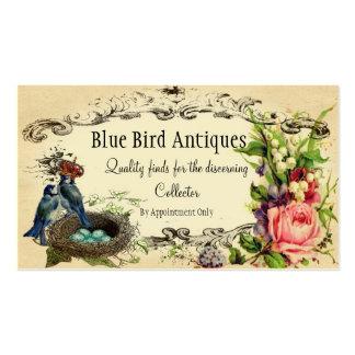 Tarjeta color de rosa y del arrendajo azul del tarjetas de visita