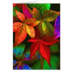 Tarjeta colorida brillante de las hojas