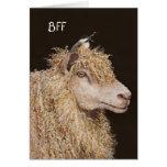 Tarjeta de BFF con las ovejas y el chickadee