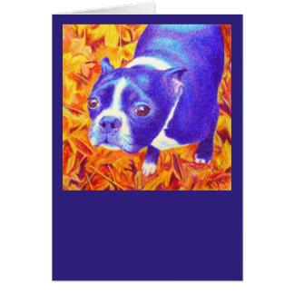 "Tarjeta de Boston Terrier - ""margarita """