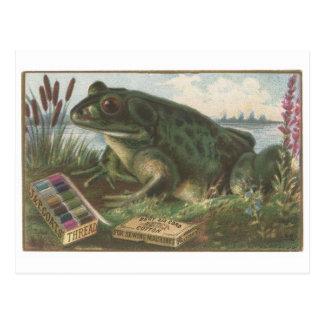 Tarjeta de comercio de la rana del hilo de las cap tarjeta postal