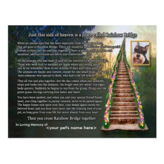 Tarjeta de condolencia de la pérdida del mascota tarjetas postales
