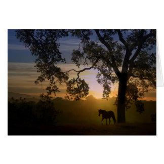 Tarjeta de condolencia del caballo