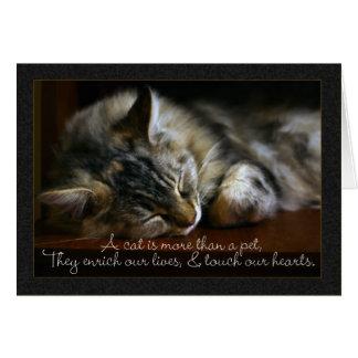 Tarjeta de condolencia del gato del mascota, pérdi
