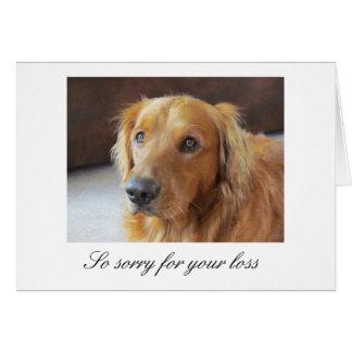 Tarjeta de condolencia del mascota con golden retr