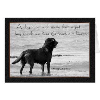 Tarjeta de condolencia del perro casero - toque nu