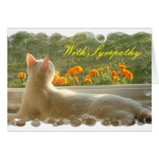 Tarjeta de condolencia felina